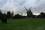 Bockmühle in Wehe