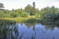 Gut Sunder - Teich