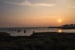 Sonnenaufgang am  Darß - Ostsee