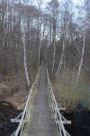 Steinhuder Meer - Moorerlebnisweg