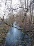 Am Mittellandkanal im Februar 2017pg