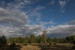 Naturpark Südheide - Wolken