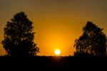 Naturpark Südheide - Sonnenaufgang