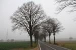 Nebel in Schaumburg
